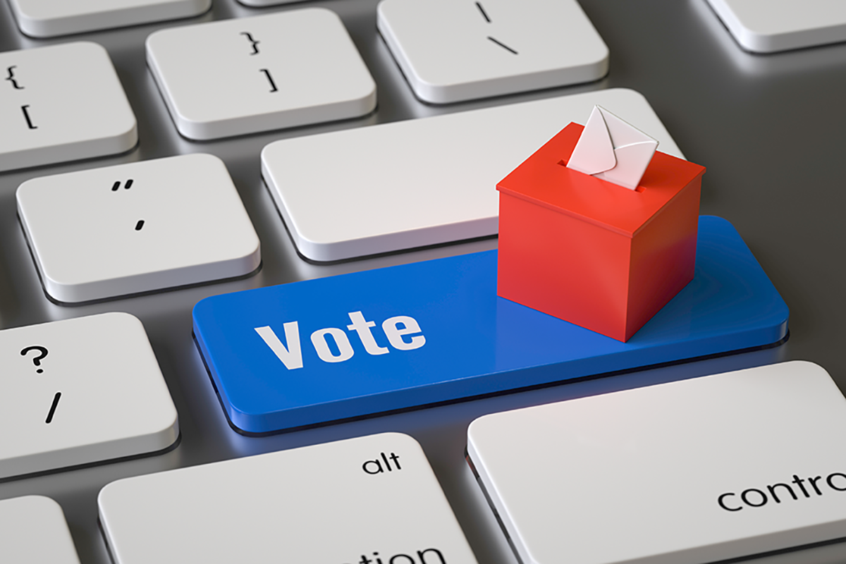 Elections partielles 100% en ligne